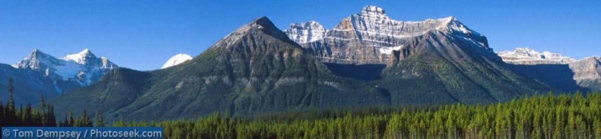 Banff International Conferences on Behavioural Science